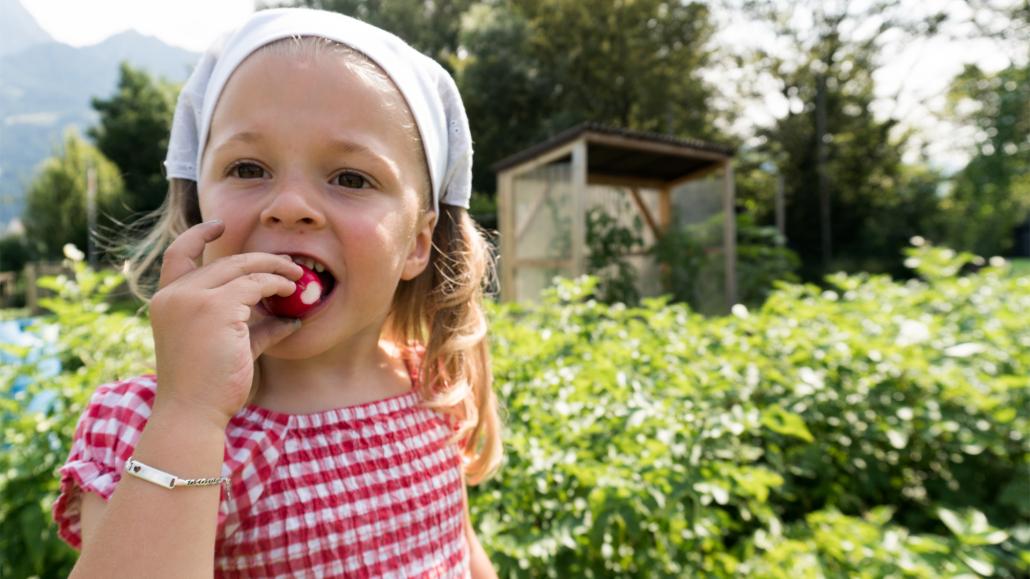 Zukunftsthemen Gesundheit: Junges Mädchen beißt in ein Radieschen, dass sie gerade im Garten selbst geerntet hat
